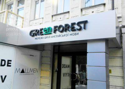 """Вывеска из композита с объемными буквами """"Green Forest"""" курсы английского языка"""